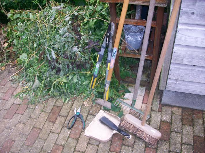 Winterklaar Maken Tuin : Tuin winterklaar maken hoe wanneer je tuin gereed maken
